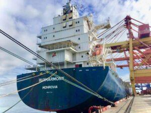 Das Containerschiff Buxharmony wurde im Internet versteigert. VesselBid ist eine neue Online-Plattform für die Versteigung von Schiffen.